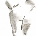 kroki 2014 02 22 14 (348x800)